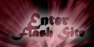 Enter Flash site